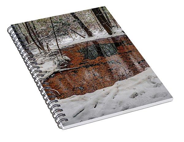 Winter Reflections Spiral Notebook
