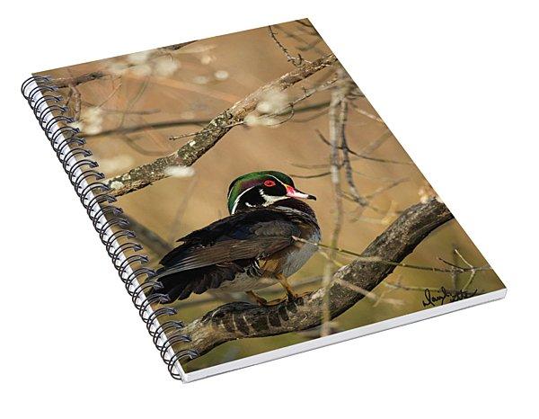 Winter Woody Spiral Notebook