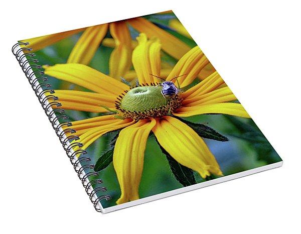 Yellow Flower Spiral Notebook