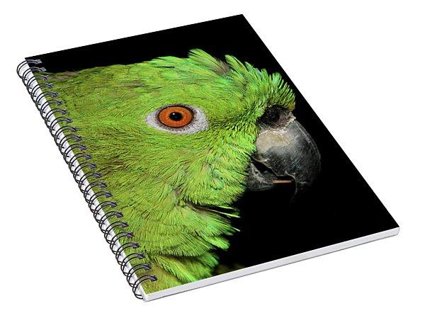 Yellow-naped Amazon Spiral Notebook