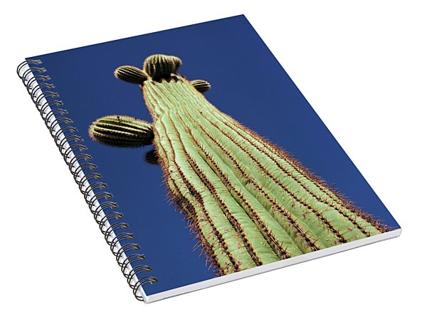 Young And Tall Spiral Notebook