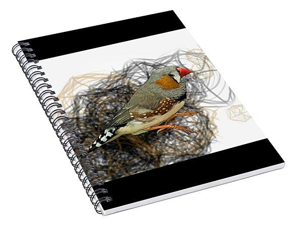 Z Is For Zebra Finch Spiral Notebook