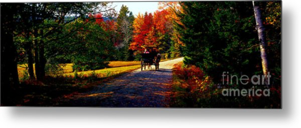 Acadia National Park Carriage Trail Fall  Metal Print