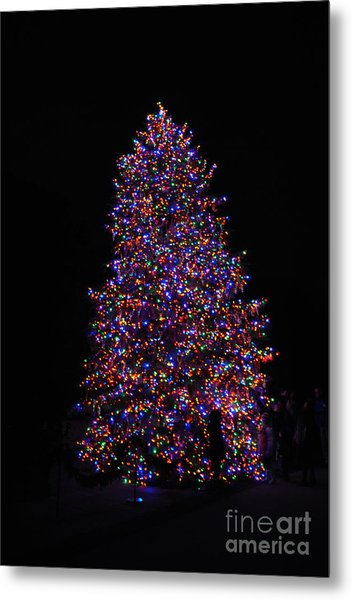 All Lit Up Metal Print by Jacqueline M Lewis