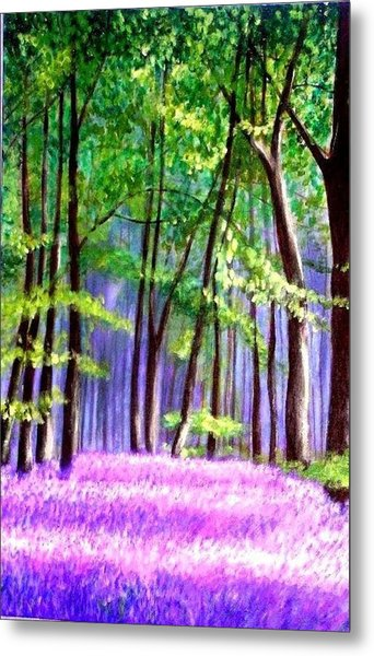Bluebells Wood  Metal Print