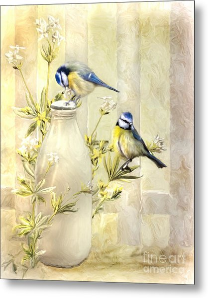 English Blue Tits Metal Print