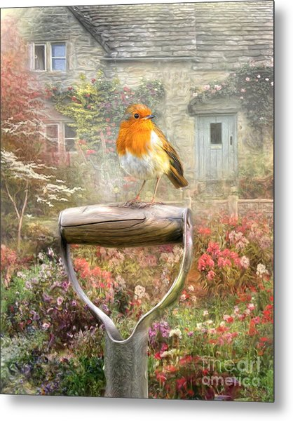 English Robin Metal Print