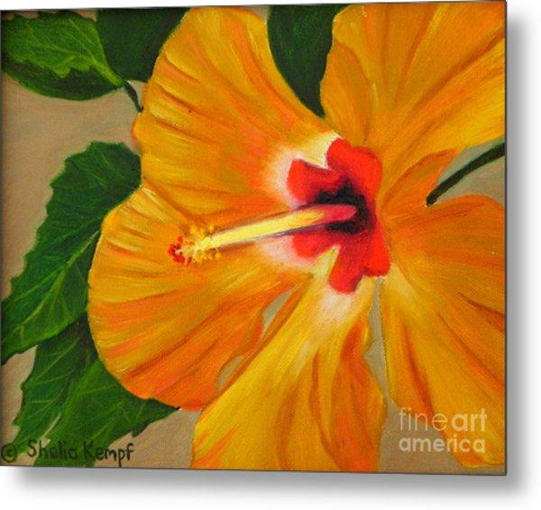 Golden Glow - Hibiscus Flower Metal Print