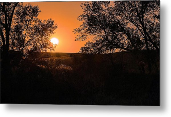 Hayfield At Night Metal Print
