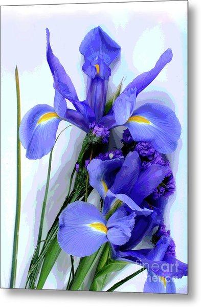 Iris -- Pretty In Purple-1 Metal Print