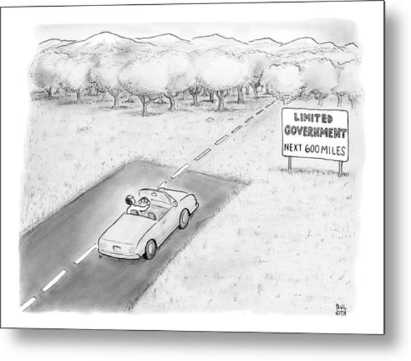 Limited Government Metal Print