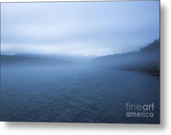 Mist In Otter Cove Metal Print