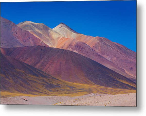 Painted Atacama Metal Print