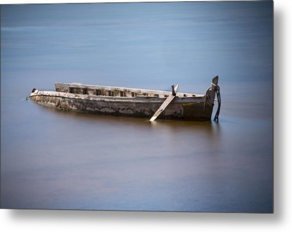Past Its Best. Metal Print