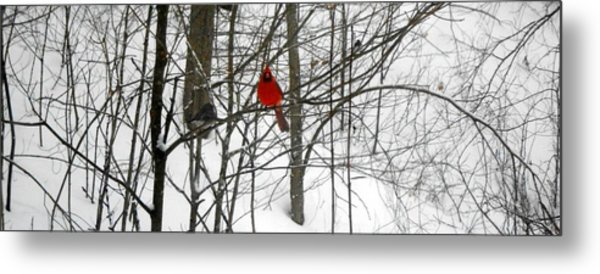 Red Wings In The Woodland Metal Print by Dina  Stillwell