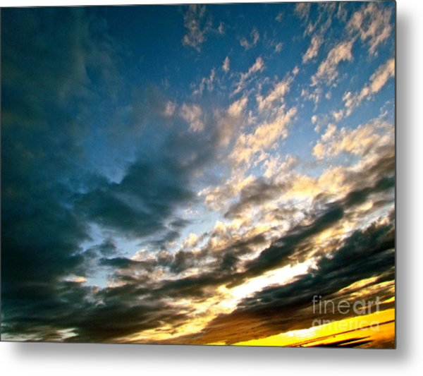 Sky Sings Metal Print by Q's House of Art ArtandFinePhotography