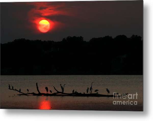 0016 White Rock Lake Dallas Texas Metal Print