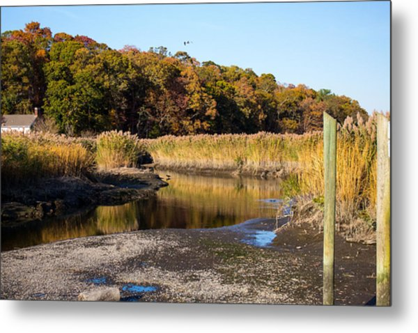 Fall Foliage At Nissequogue River Metal Print