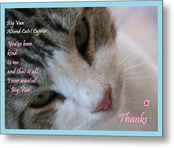 A Big Van Thanks Altered Cats Cyprus Metal Print