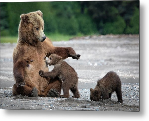 A Mothers Love Metal Print by Renee Doyle