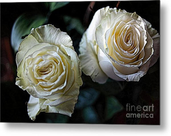 A Perfect Pair Metal Print