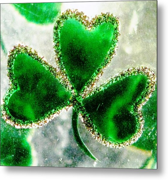 A Shamrock On Ice Metal Print