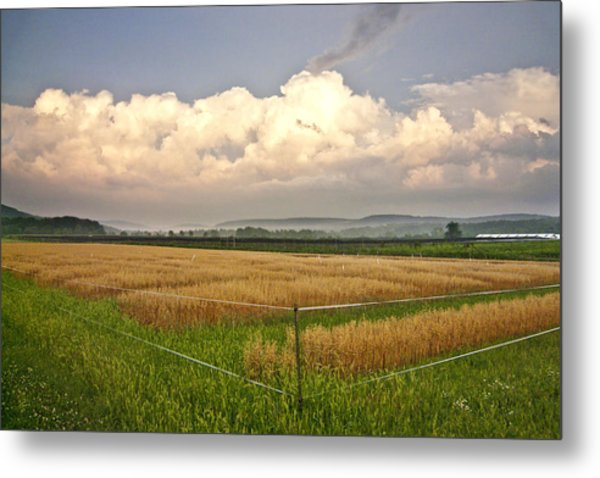 After The Storm Metal Print by Stan Bowman