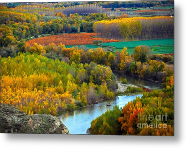 Autumn Colors On The Ebro River Metal Print