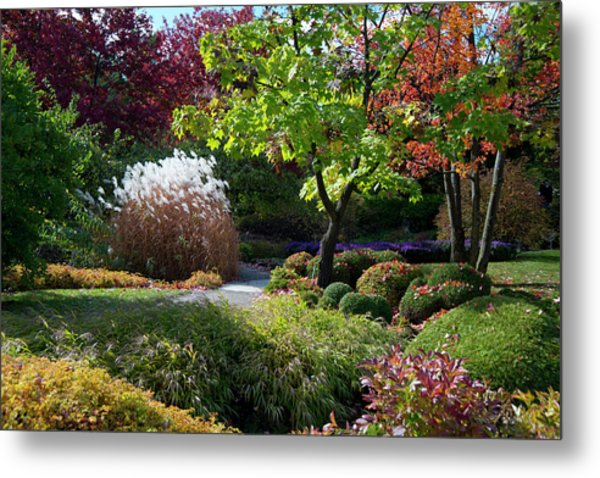 Autumn Foliage In The Montreal Metal Print by Ellen Rooney / Robertharding