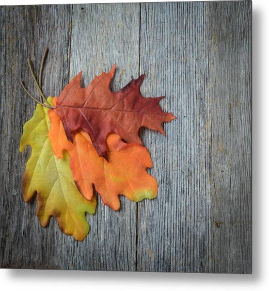Autumn Leaves On Rustic Wooden Background Metal Print