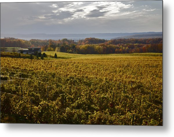 Autumn On Old Mission Peninsula  Metal Print