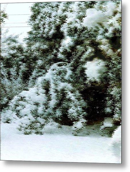 Backyard Snow Metal Print by Elaine Williams