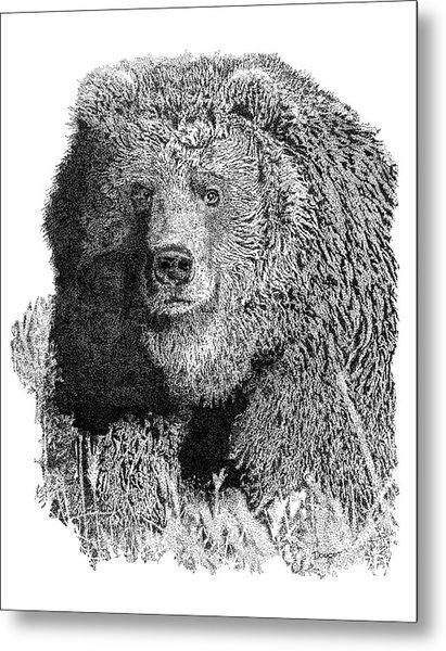Bear 1 Metal Print