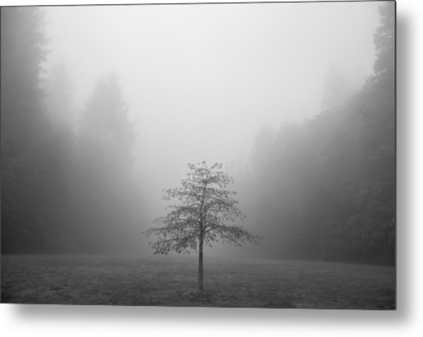 Being Centered Metal Print
