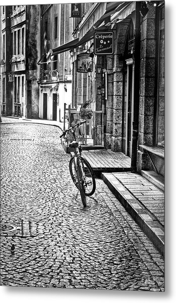 Bicycle And Sparrow 2  Metal Print