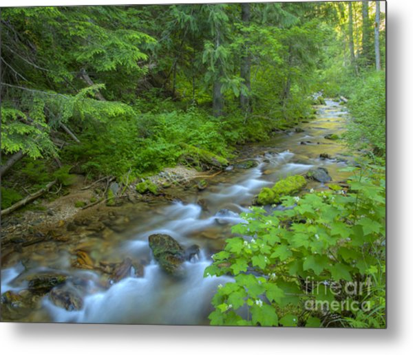 Big Creek Metal Print