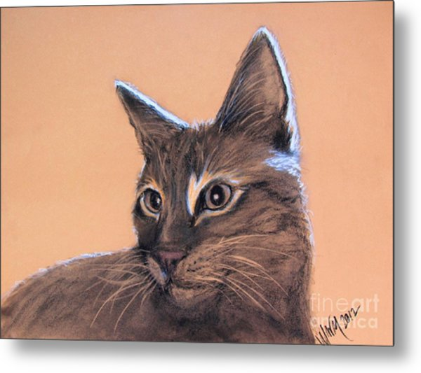 Big Kitten Metal Print