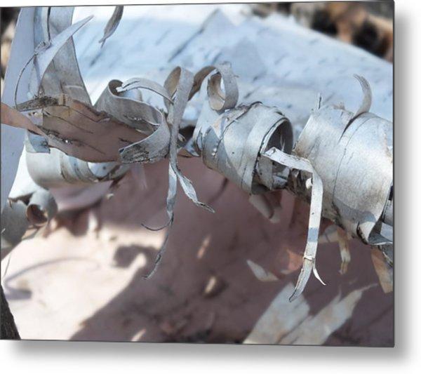 Birch Bark Metal Print by Gene Cyr