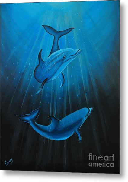 Bottle-nose Dolphins Metal Print