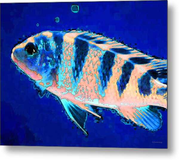 Bubbles Fish Art By Sharon Cummings Metal Print by William Patrick