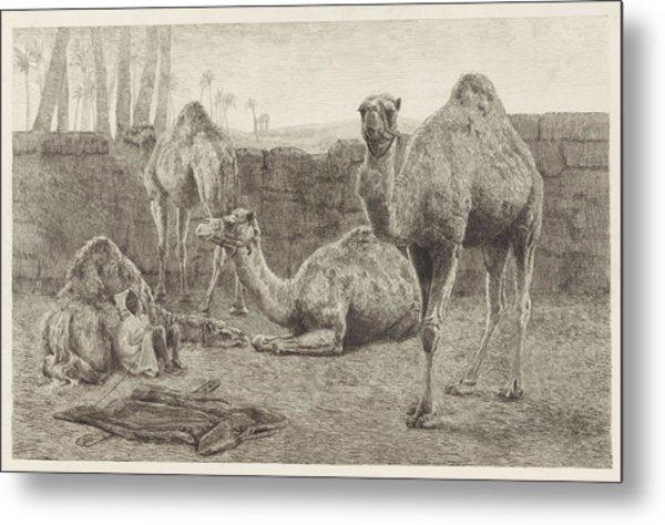 Camels, August Le Gras Metal Print