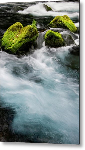 Chile South America Moss-covered Metal Print by Scott T. Smith
