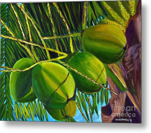 Coconuts At Sunset Metal Print