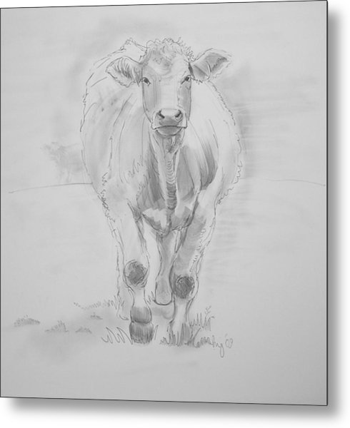 Cow Drawing Metal Print