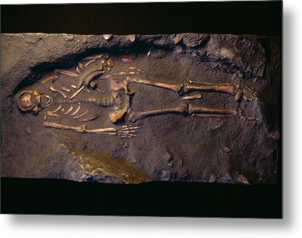 Cro-magnon Man Fossil Metal Print by Pascal Goetgheluck/science Photo Library