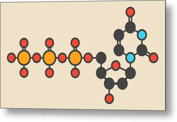 Deoxycytidine Molecule Metal Print by Molekuul