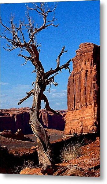 Desert Formations Metal Print
