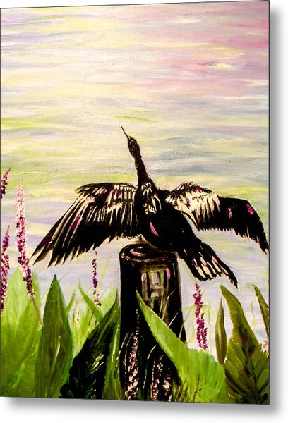 Drying Feathers Metal Print