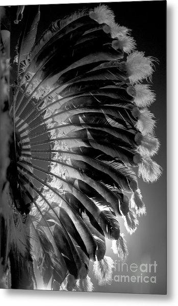 Eagle Feathers Metal Print