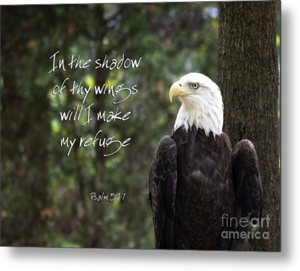 Eagle Scripture Metal Print